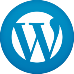 We use WordPress for the majority of our website design and conversion projects