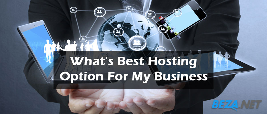 What's Best Hosting Options for Your Business